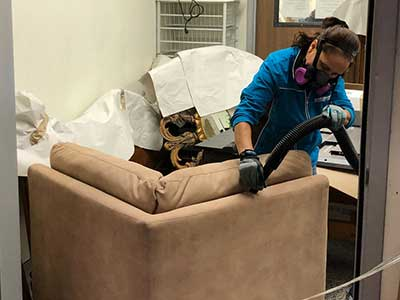 furniture mold removal