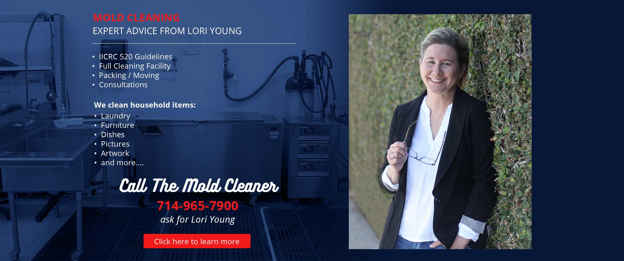 The mold Cleaner